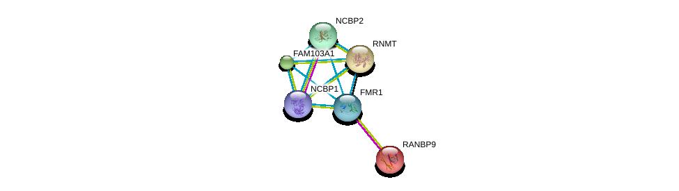http://string-db.org/version_10/api/image/networkList?limit=0&targetmode=proteins&caller_identity=gene_cards&network_flavor=evidence&identifiers=9606.ENSP00000359506%0d%0a9606.ENSP00000326806%0d%0a9606.ENSP00000262173%0d%0a9606.ENSP00000364289%0d%0a9606.ENSP00000307181%0d%0a9606.ENSP00000011619%0d%0a