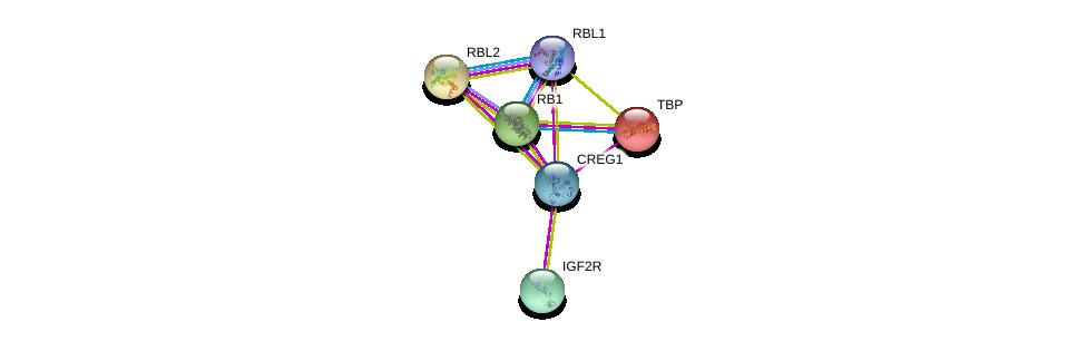 http://string-db.org/version_10/api/image/networkList?limit=0&targetmode=proteins&caller_identity=gene_cards&network_flavor=evidence&identifiers=9606.ENSP00000359540%0d%0a9606.ENSP00000349437%0d%0a9606.ENSP00000230354%0d%0a9606.ENSP00000267163%0d%0a9606.ENSP00000362768%0d%0a9606.ENSP00000262133%0d%0a