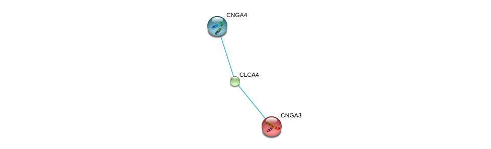 http://string-db.org/version_10/api/image/networkList?limit=0&targetmode=proteins&caller_identity=gene_cards&network_flavor=evidence&identifiers=9606.ENSP00000359594%0d%0a9606.ENSP00000272602%0d%0a9606.ENSP00000369268%0d%0a
