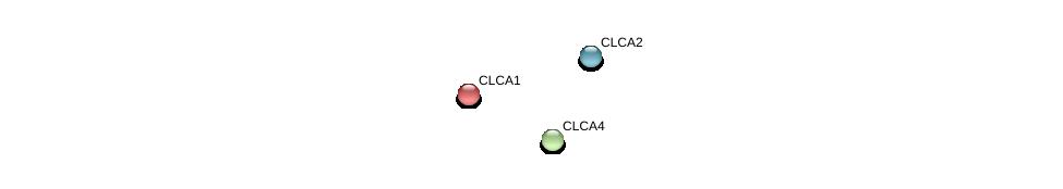 http://string-db.org/version_10/api/image/networkList?limit=0&targetmode=proteins&caller_identity=gene_cards&network_flavor=evidence&identifiers=9606.ENSP00000359594%0d%0a9606.ENSP00000359596%0d%0a9606.ENSP00000234701%0d%0a