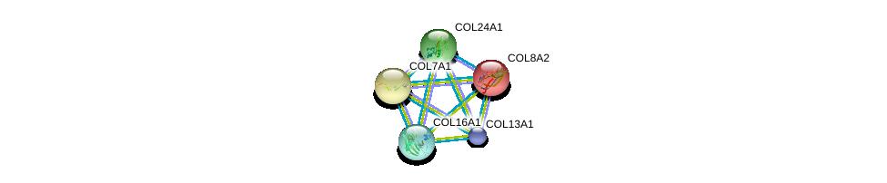 http://string-db.org/version_10/api/image/networkList?limit=0&targetmode=proteins&caller_identity=gene_cards&network_flavor=evidence&identifiers=9606.ENSP00000359603%0d%0a9606.ENSP00000332371%0d%0a9606.ENSP00000332371%0d%0a9606.ENSP00000381949%0d%0a9606.ENSP00000362776%0d%0a9606.ENSP00000305913%0d%0a