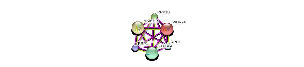 http://string-db.org/version_10/api/image/networkList?limit=0&targetmode=proteins&caller_identity=gene_cards&network_flavor=evidence&identifiers=9606.ENSP00000359688%0d%0a9606.ENSP00000278856%0d%0a9606.ENSP00000354040%0d%0a9606.ENSP00000285814%0d%0a9606.ENSP00000339145%0d%0a9606.ENSP00000417464%0d%0a