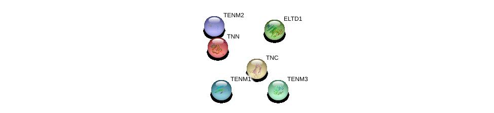 http://string-db.org/version_10/api/image/networkList?limit=0&targetmode=proteins&caller_identity=gene_cards&network_flavor=evidence&identifiers=9606.ENSP00000359778%0d%0a9606.ENSP00000429430%0d%0a9606.ENSP00000403954%0d%0a9606.ENSP00000385276%0d%0a9606.ENSP00000239462%0d%0a9606.ENSP00000265131%0d%0a