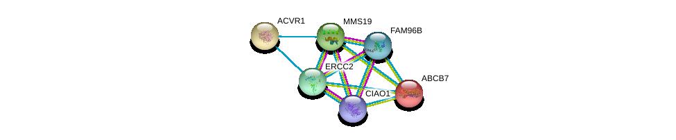 http://string-db.org/version_10/api/image/networkList?limit=0&targetmode=proteins&caller_identity=gene_cards&network_flavor=evidence&identifiers=9606.ENSP00000359818%0d%0a9606.ENSP00000387471%0d%0a9606.ENSP00000418287%0d%0a9606.ENSP00000375809%0d%0a9606.ENSP00000263640%0d%0a9606.ENSP00000253577%0d%0a
