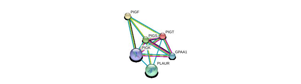 http://string-db.org/version_10/api/image/networkList?limit=0&targetmode=proteins&caller_identity=gene_cards&network_flavor=evidence&identifiers=9606.ENSP00000359848%0d%0a9606.ENSP00000279036%0d%0a9606.ENSP00000309430%0d%0a9606.ENSP00000347206%0d%0a9606.ENSP00000281382%0d%0a9606.ENSP00000339328%0d%0a