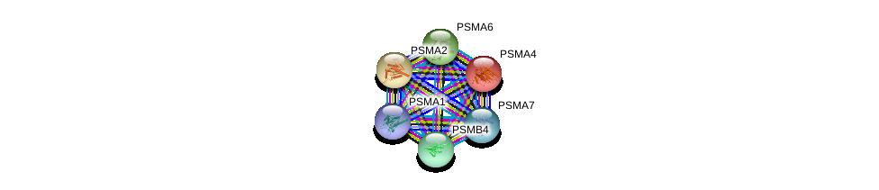 http://string-db.org/version_10/api/image/networkList?limit=0&targetmode=proteins&caller_identity=gene_cards&network_flavor=evidence&identifiers=9606.ENSP00000359910%0d%0a9606.ENSP00000044462%0d%0a9606.ENSP00000290541%0d%0a9606.ENSP00000414359%0d%0a9606.ENSP00000261479%0d%0a9606.ENSP00000223321%0d%0a