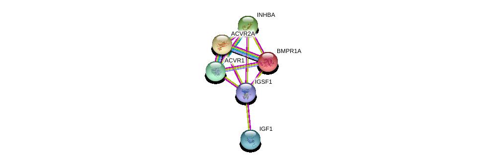 http://string-db.org/version_10/api/image/networkList?limit=0&targetmode=proteins&caller_identity=gene_cards&network_flavor=evidence&identifiers=9606.ENSP00000359940%0d%0a9606.ENSP00000302665%0d%0a9606.ENSP00000224764%0d%0a9606.ENSP00000241416%0d%0a9606.ENSP00000242208%0d%0a9606.ENSP00000263640%0d%0a