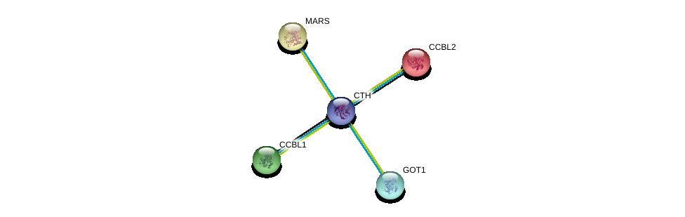 http://string-db.org/version_10/api/image/networkList?limit=0&targetmode=proteins&caller_identity=gene_cards&network_flavor=evidence&identifiers=9606.ENSP00000359976%0d%0a9606.ENSP00000302227%0d%0a9606.ENSP00000260508%0d%0a9606.ENSP00000262027%0d%0a9606.ENSP00000262027%0d%0a9606.ENSP00000359539%0d%0a