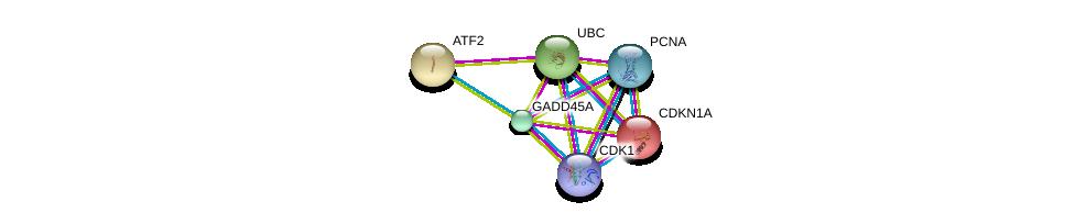 http://string-db.org/version_10/api/image/networkList?limit=0&targetmode=proteins&caller_identity=gene_cards&network_flavor=evidence&identifiers=9606.ENSP00000360025%0d%0a9606.ENSP00000368438%0d%0a9606.ENSP00000378699%0d%0a9606.ENSP00000344818%0d%0a9606.ENSP00000244741%0d%0a9606.ENSP00000264110%0d%0a