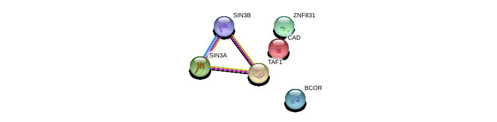 http://string-db.org/version_10/api/image/networkList?limit=0&targetmode=proteins&caller_identity=gene_cards&network_flavor=evidence&identifiers=9606.ENSP00000360069%0d%0a9606.ENSP00000369131%0d%0a9606.ENSP00000353622%0d%0a9606.ENSP00000367705%0d%0a9606.ENSP00000264705%0d%0a9606.ENSP00000276072%0d%0a