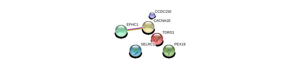http://string-db.org/version_10/api/image/networkList?limit=0&targetmode=proteins&caller_identity=gene_cards&network_flavor=evidence&identifiers=9606.ENSP00000360107%0d%0a9606.ENSP00000251864%0d%0a9606.ENSP00000357051%0d%0a9606.ENSP00000356545%0d%0a9606.ENSP00000373827%0d%0a9606.ENSP00000360593%0d%0a