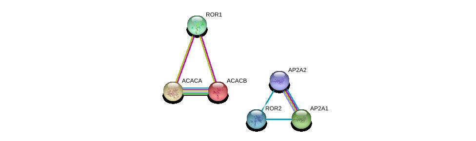 http://string-db.org/version_10/api/image/networkList?limit=0&targetmode=proteins&caller_identity=gene_cards&network_flavor=evidence&identifiers=9606.ENSP00000360120%0d%0a9606.ENSP00000364860%0d%0a9606.ENSP00000413234%0d%0a9606.ENSP00000351926%0d%0a9606.ENSP00000341044%0d%0a9606.ENSP00000344789%0d%0a