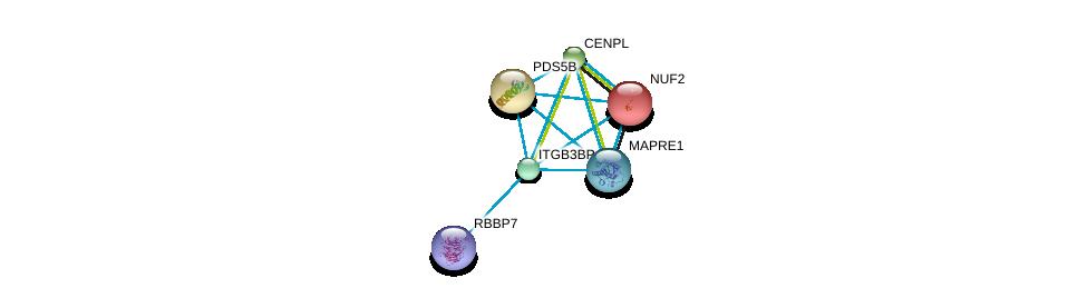http://string-db.org/version_10/api/image/networkList?limit=0&targetmode=proteins&caller_identity=gene_cards&network_flavor=evidence&identifiers=9606.ENSP00000360133%0d%0a9606.ENSP00000313851%0d%0a9606.ENSP00000369424%0d%0a9606.ENSP00000348527%0d%0a9606.ENSP00000364721%0d%0a9606.ENSP00000271452%0d%0a