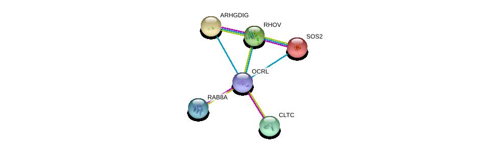 http://string-db.org/version_10/api/image/networkList?limit=0&targetmode=proteins&caller_identity=gene_cards&network_flavor=evidence&identifiers=9606.ENSP00000360154%0d%0a9606.ENSP00000300935%0d%0a9606.ENSP00000269122%0d%0a9606.ENSP00000220507%0d%0a9606.ENSP00000219409%0d%0a9606.ENSP00000216373%0d%0a