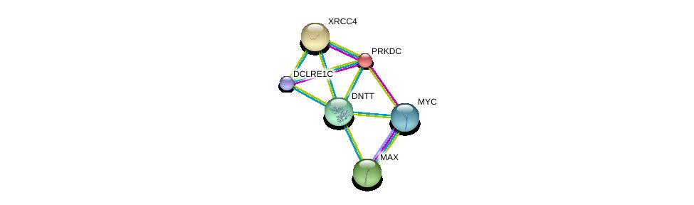 http://string-db.org/version_10/api/image/networkList?limit=0&targetmode=proteins&caller_identity=gene_cards&network_flavor=evidence&identifiers=9606.ENSP00000360216%0d%0a9606.ENSP00000313420%0d%0a9606.ENSP00000342011%0d%0a9606.ENSP00000351490%0d%0a9606.ENSP00000367207%0d%0a9606.ENSP00000367527%0d%0a