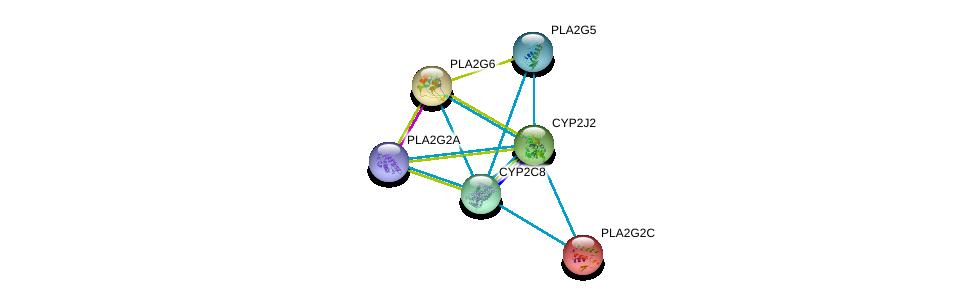 http://string-db.org/version_10/api/image/networkList?limit=0&targetmode=proteins&caller_identity=gene_cards&network_flavor=evidence&identifiers=9606.ENSP00000360247%0d%0a9606.ENSP00000364249%0d%0a9606.ENSP00000247992%0d%0a9606.ENSP00000364252%0d%0a9606.ENSP00000333142%0d%0a9606.ENSP00000360317%0d%0a