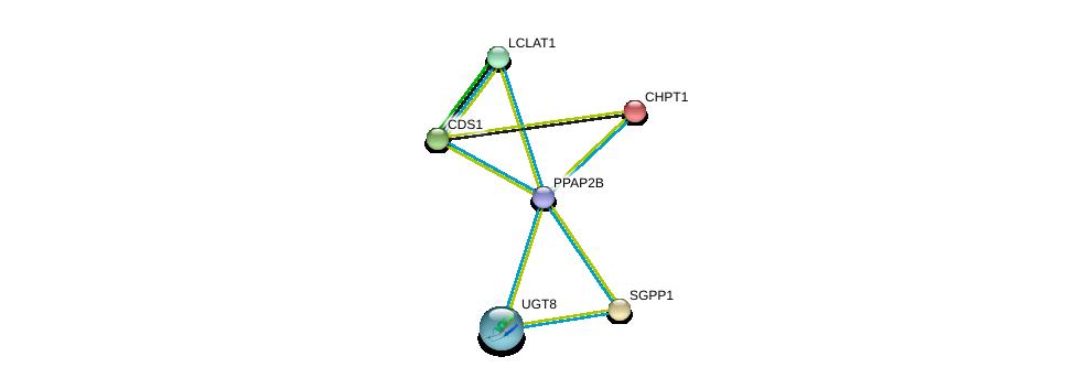 http://string-db.org/version_10/api/image/networkList?limit=0&targetmode=proteins&caller_identity=gene_cards&network_flavor=evidence&identifiers=9606.ENSP00000360296%0d%0a9606.ENSP00000295887%0d%0a9606.ENSP00000247225%0d%0a9606.ENSP00000229266%0d%0a9606.ENSP00000310551%0d%0a9606.ENSP00000311648%0d%0a