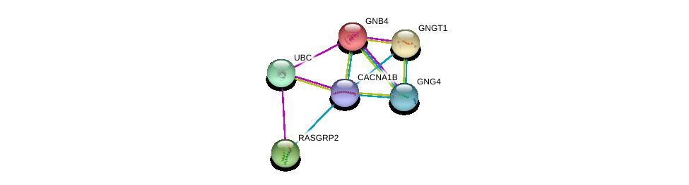 http://string-db.org/version_10/api/image/networkList?limit=0&targetmode=proteins&caller_identity=gene_cards&network_flavor=evidence&identifiers=9606.ENSP00000360406%0d%0a9606.ENSP00000344818%0d%0a9606.ENSP00000232564%0d%0a9606.ENSP00000248572%0d%0a9606.ENSP00000355556%0d%0a9606.ENSP00000338864%0d%0a