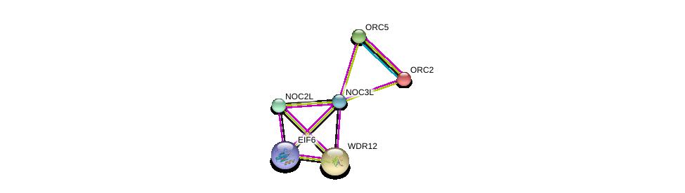 http://string-db.org/version_10/api/image/networkList?limit=0&targetmode=proteins&caller_identity=gene_cards&network_flavor=evidence&identifiers=9606.ENSP00000360412%0d%0a9606.ENSP00000234296%0d%0a9606.ENSP00000261015%0d%0a9606.ENSP00000363559%0d%0a9606.ENSP00000297431%0d%0a9606.ENSP00000317992%0d%0a
