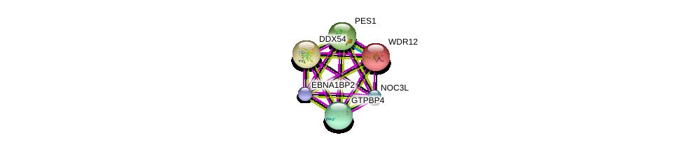 http://string-db.org/version_10/api/image/networkList?limit=0&targetmode=proteins&caller_identity=gene_cards&network_flavor=evidence&identifiers=9606.ENSP00000360412%0d%0a9606.ENSP00000354040%0d%0a9606.ENSP00000323858%0d%0a9606.ENSP00000346725%0d%0a9606.ENSP00000261015%0d%0a9606.ENSP00000407323%0d%0a