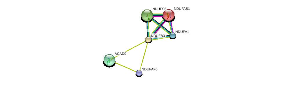 http://string-db.org/version_10/api/image/networkList?limit=0&targetmode=proteins&caller_identity=gene_cards&network_flavor=evidence&identifiers=9606.ENSP00000360492%0d%0a9606.ENSP00000007516%0d%0a9606.ENSP00000237889%0d%0a9606.ENSP00000274137%0d%0a9606.ENSP00000312618%0d%0a9606.ENSP00000379430%0d%0a