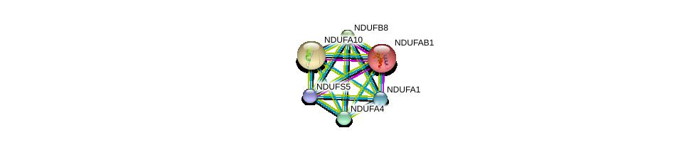 http://string-db.org/version_10/api/image/networkList?limit=0&targetmode=proteins&caller_identity=gene_cards&network_flavor=evidence&identifiers=9606.ENSP00000360492%0d%0a9606.ENSP00000007516%0d%0a9606.ENSP00000252711%0d%0a9606.ENSP00000339720%0d%0a9606.ENSP00000362058%0d%0a9606.ENSP00000299166%0d%0a