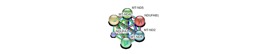 http://string-db.org/version_10/api/image/networkList?limit=0&targetmode=proteins&caller_identity=gene_cards&network_flavor=evidence&identifiers=9606.ENSP00000360492%0d%0a9606.ENSP00000007516%0d%0a9606.ENSP00000354728%0d%0a9606.ENSP00000354813%0d%0a9606.ENSP00000354961%0d%0a9606.ENSP00000355046%0d%0a