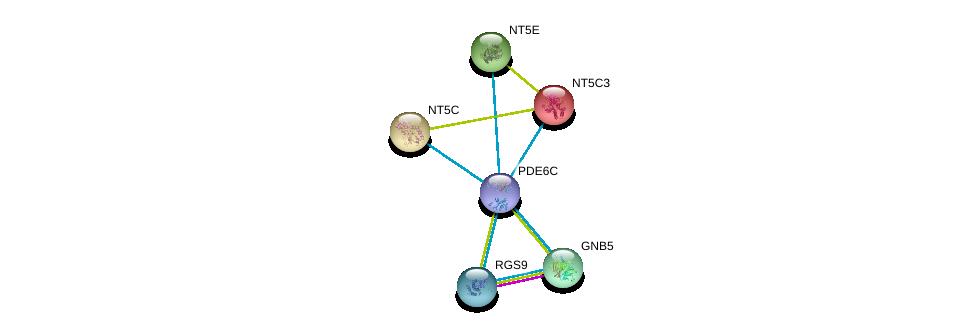 http://string-db.org/version_10/api/image/networkList?limit=0&targetmode=proteins&caller_identity=gene_cards&network_flavor=evidence&identifiers=9606.ENSP00000360502%0d%0a9606.ENSP00000257770%0d%0a9606.ENSP00000261837%0d%0a9606.ENSP00000262406%0d%0a9606.ENSP00000245552%0d%0a9606.ENSP00000242210%0d%0a