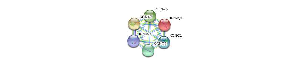 http://string-db.org/version_10/api/image/networkList?limit=0&targetmode=proteins&caller_identity=gene_cards&network_flavor=evidence&identifiers=9606.ENSP00000360626%0d%0a9606.ENSP00000155840%0d%0a9606.ENSP00000221444%0d%0a9606.ENSP00000252321%0d%0a9606.ENSP00000262916%0d%0a9606.ENSP00000265969%0d%0a
