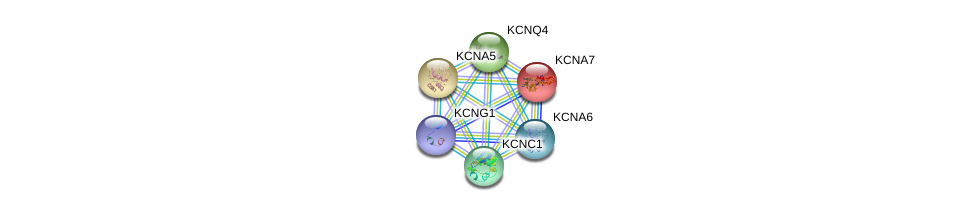 http://string-db.org/version_10/api/image/networkList?limit=0&targetmode=proteins&caller_identity=gene_cards&network_flavor=evidence&identifiers=9606.ENSP00000360626%0d%0a9606.ENSP00000221444%0d%0a9606.ENSP00000252321%0d%0a9606.ENSP00000262916%0d%0a9606.ENSP00000265969%0d%0a9606.ENSP00000280684%0d%0a