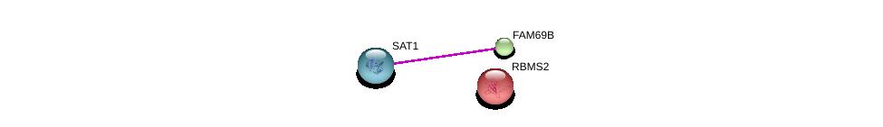 http://string-db.org/version_10/api/image/networkList?limit=0&targetmode=proteins&caller_identity=gene_cards&network_flavor=evidence&identifiers=9606.ENSP00000360757%0d%0a9606.ENSP00000368572%0d%0a9606.ENSP00000262031%0d%0a