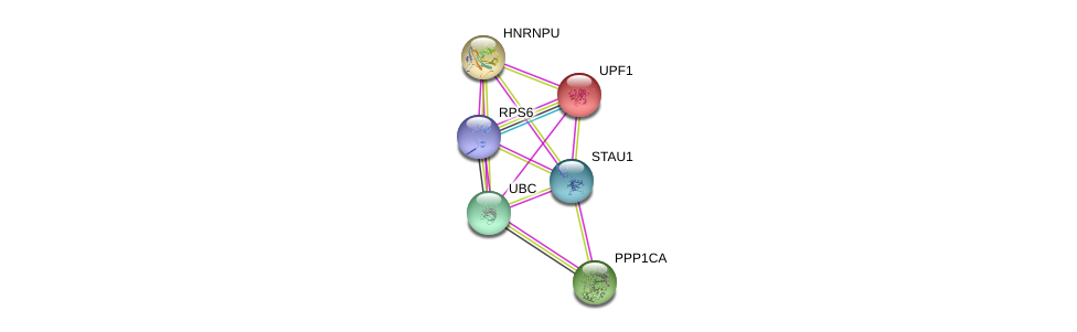 http://string-db.org/version_10/api/image/networkList?limit=0&targetmode=proteins&caller_identity=gene_cards&network_flavor=evidence&identifiers=9606.ENSP00000360922%0d%0a9606.ENSP00000262803%0d%0a9606.ENSP00000369757%0d%0a9606.ENSP00000344818%0d%0a9606.ENSP00000326031%0d%0a9606.ENSP00000283179%0d%0a