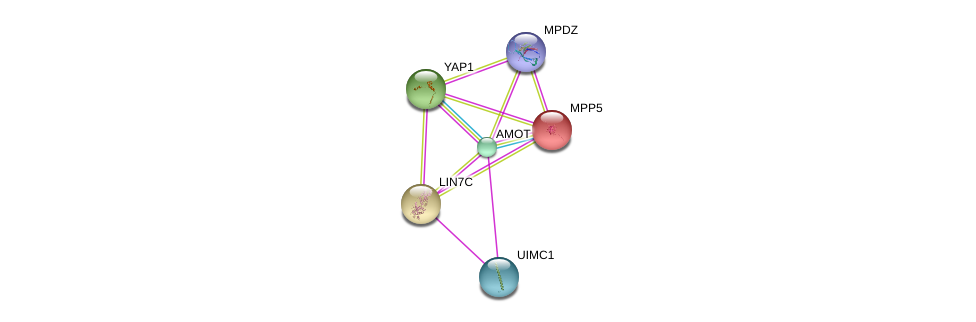 http://string-db.org/version_10/api/image/networkList?limit=0&targetmode=proteins&caller_identity=gene_cards&network_flavor=evidence&identifiers=9606.ENSP00000361027%0d%0a9606.ENSP00000278193%0d%0a9606.ENSP00000366434%0d%0a9606.ENSP00000282441%0d%0a9606.ENSP00000261681%0d%0a9606.ENSP00000370410%0d%0a