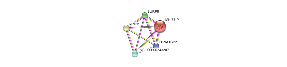 http://string-db.org/version_10/api/image/networkList?limit=0&targetmode=proteins&caller_identity=gene_cards&network_flavor=evidence&identifiers=9606.ENSP00000361092%0d%0a9606.ENSP00000285814%0d%0a9606.ENSP00000407323%0d%0a9606.ENSP00000407323%0d%0a9606.ENSP00000355899%0d%0a9606.ENSP00000377385%0d%0a