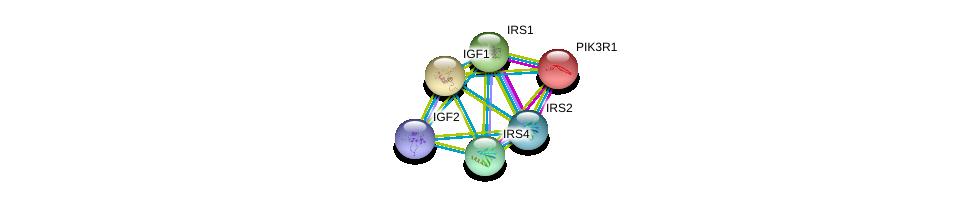 http://string-db.org/version_10/api/image/networkList?limit=0&targetmode=proteins&caller_identity=gene_cards&network_flavor=evidence&identifiers=9606.ENSP00000361202%0d%0a9606.ENSP00000274335%0d%0a9606.ENSP00000391826%0d%0a9606.ENSP00000302665%0d%0a9606.ENSP00000365016%0d%0a9606.ENSP00000304895%0d%0a