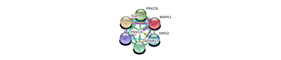 http://string-db.org/version_10/api/image/networkList?limit=0&targetmode=proteins&caller_identity=gene_cards&network_flavor=evidence&identifiers=9606.ENSP00000361214%0d%0a9606.ENSP00000305355%0d%0a9606.ENSP00000215832%0d%0a9606.ENSP00000408695%0d%0a9606.ENSP00000309968%0d%0a9606.ENSP00000275493%0d%0a