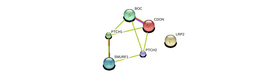 http://string-db.org/version_10/api/image/networkList?limit=0&targetmode=proteins&caller_identity=gene_cards&network_flavor=evidence&identifiers=9606.ENSP00000361266%0d%0a9606.ENSP00000332353%0d%0a9606.ENSP00000347546%0d%0a9606.ENSP00000354621%0d%0a9606.ENSP00000263816%0d%0a9606.ENSP00000263577%0d%0a