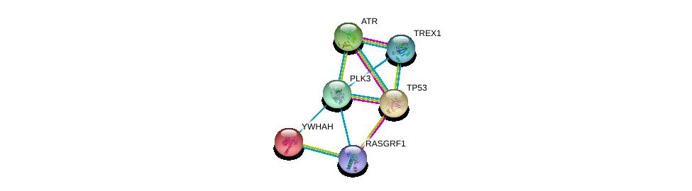 http://string-db.org/version_10/api/image/networkList?limit=0&targetmode=proteins&caller_identity=gene_cards&network_flavor=evidence&identifiers=9606.ENSP00000361275%0d%0a9606.ENSP00000269305%0d%0a9606.ENSP00000343741%0d%0a9606.ENSP00000390478%0d%0a9606.ENSP00000405963%0d%0a9606.ENSP00000248975%0d%0a