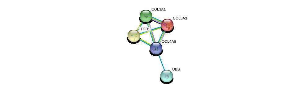 http://string-db.org/version_10/api/image/networkList?limit=0&targetmode=proteins&caller_identity=gene_cards&network_flavor=evidence&identifiers=9606.ENSP00000361290%0d%0a9606.ENSP00000304408%0d%0a9606.ENSP00000304408%0d%0a9606.ENSP00000303351%0d%0a9606.ENSP00000264828%0d%0a9606.ENSP00000304697%0d%0a