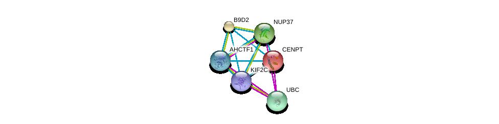http://string-db.org/version_10/api/image/networkList?limit=0&targetmode=proteins&caller_identity=gene_cards&network_flavor=evidence&identifiers=9606.ENSP00000361298%0d%0a9606.ENSP00000344818%0d%0a9606.ENSP00000355465%0d%0a9606.ENSP00000219172%0d%0a9606.ENSP00000243578%0d%0a9606.ENSP00000251074%0d%0a