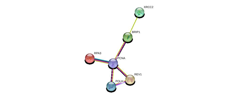 http://string-db.org/version_10/api/image/networkList?limit=0&targetmode=proteins&caller_identity=gene_cards&network_flavor=evidence&identifiers=9606.ENSP00000361310%0d%0a9606.ENSP00000368438%0d%0a9606.ENSP00000258428%0d%0a9606.ENSP00000223129%0d%0a9606.ENSP00000259008%0d%0a9606.ENSP00000352271%0d%0a
