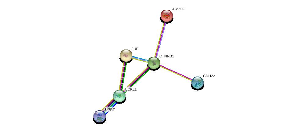http://string-db.org/version_10/api/image/networkList?limit=0&targetmode=proteins&caller_identity=gene_cards&network_flavor=evidence&identifiers=9606.ENSP00000361336%0d%0a9606.ENSP00000346155%0d%0a9606.ENSP00000311113%0d%0a9606.ENSP00000362481%0d%0a9606.ENSP00000344456%0d%0a9606.ENSP00000263207%0d%0a