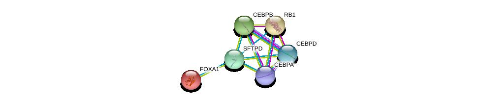 http://string-db.org/version_10/api/image/networkList?limit=0&targetmode=proteins&caller_identity=gene_cards&network_flavor=evidence&identifiers=9606.ENSP00000361366%0d%0a9606.ENSP00000427514%0d%0a9606.ENSP00000386165%0d%0a9606.ENSP00000305422%0d%0a9606.ENSP00000267163%0d%0a9606.ENSP00000250448%0d%0a