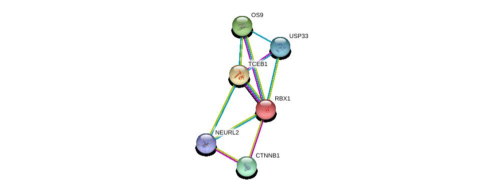 http://string-db.org/version_10/api/image/networkList?limit=0&targetmode=proteins&caller_identity=gene_cards&network_flavor=evidence&identifiers=9606.ENSP00000361596%0d%0a9606.ENSP00000344456%0d%0a9606.ENSP00000216225%0d%0a9606.ENSP00000284811%0d%0a9606.ENSP00000318165%0d%0a9606.ENSP00000350009%0d%0a