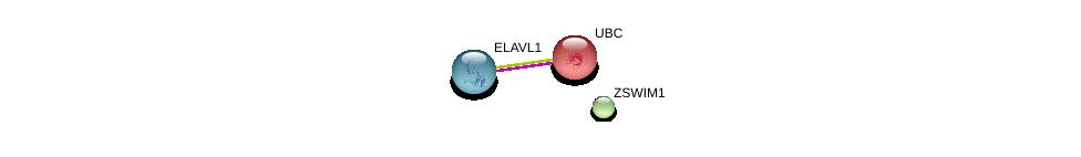 http://string-db.org/version_10/api/image/networkList?limit=0&targetmode=proteins&caller_identity=gene_cards&network_flavor=evidence&identifiers=9606.ENSP00000361598%0d%0a9606.ENSP00000385269%0d%0a9606.ENSP00000344818%0d%0a