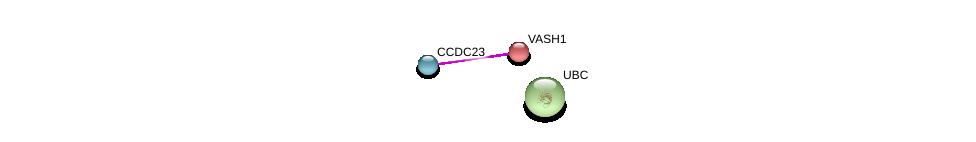 http://string-db.org/version_10/api/image/networkList?limit=0&targetmode=proteins&caller_identity=gene_cards&network_flavor=evidence&identifiers=9606.ENSP00000361599%0d%0a9606.ENSP00000167106%0d%0a9606.ENSP00000344818%0d%0a