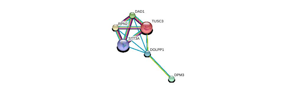 http://string-db.org/version_10/api/image/networkList?limit=0&targetmode=proteins&caller_identity=gene_cards&network_flavor=evidence&identifiers=9606.ENSP00000361625%0d%0a9606.ENSP00000357384%0d%0a9606.ENSP00000237530%0d%0a9606.ENSP00000221167%0d%0a9606.ENSP00000376472%0d%0a9606.ENSP00000250498%0d%0a
