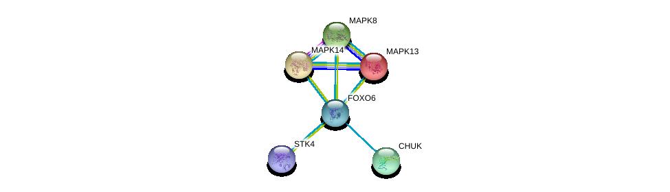 http://string-db.org/version_10/api/image/networkList?limit=0&targetmode=proteins&caller_identity=gene_cards&network_flavor=evidence&identifiers=9606.ENSP00000361672%0d%0a9606.ENSP00000229794%0d%0a9606.ENSP00000359424%0d%0a9606.ENSP00000211287%0d%0a9606.ENSP00000353483%0d%0a9606.ENSP00000361892%0d%0a