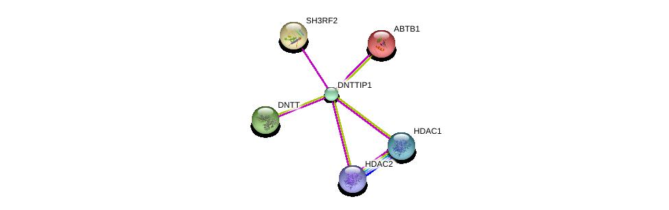 http://string-db.org/version_10/api/image/networkList?limit=0&targetmode=proteins&caller_identity=gene_cards&network_flavor=evidence&identifiers=9606.ENSP00000361705%0d%0a9606.ENSP00000430432%0d%0a9606.ENSP00000362649%0d%0a9606.ENSP00000232744%0d%0a9606.ENSP00000360216%0d%0a9606.ENSP00000352028%0d%0a