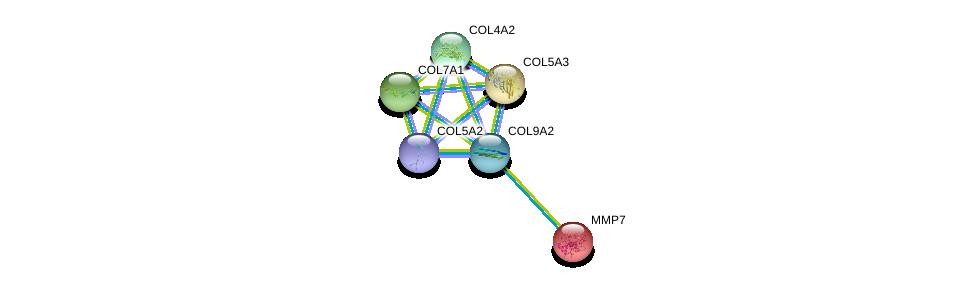 http://string-db.org/version_10/api/image/networkList?limit=0&targetmode=proteins&caller_identity=gene_cards&network_flavor=evidence&identifiers=9606.ENSP00000361834%0d%0a9606.ENSP00000264828%0d%0a9606.ENSP00000260227%0d%0a9606.ENSP00000364000%0d%0a9606.ENSP00000353654%0d%0a9606.ENSP00000332371%0d%0a